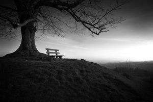 epifanie-coaching-eenzaamheid