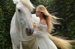 paarden zijn altijd mindful