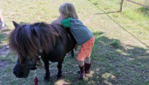 Pony Pret dag ochtend op 3 april