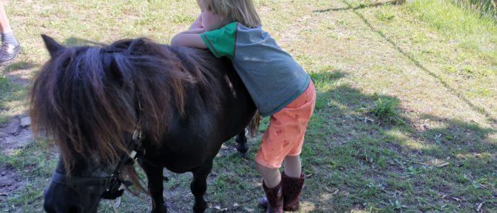 Pony Pret dag op 10 juli