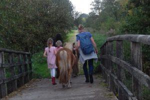 pony pret dag